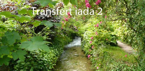 Transfert Iada
